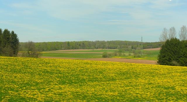 5mei.dagtrip.Eifel 066