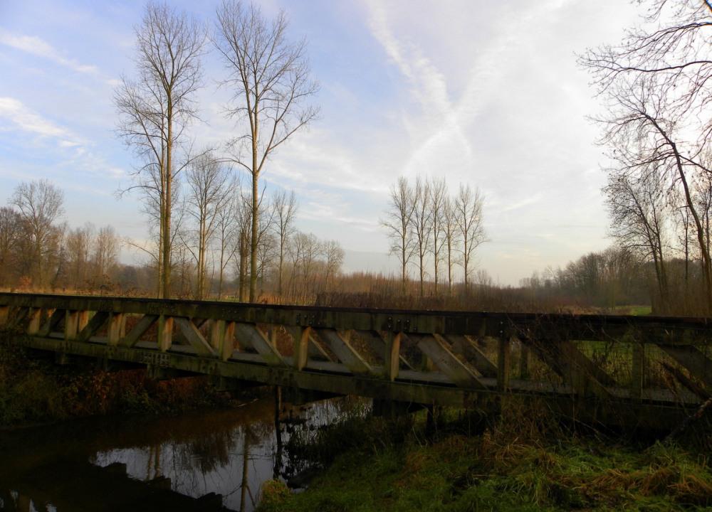 houten brug schwienswei