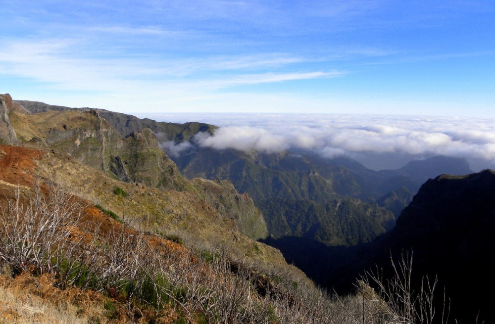 Madeira 118