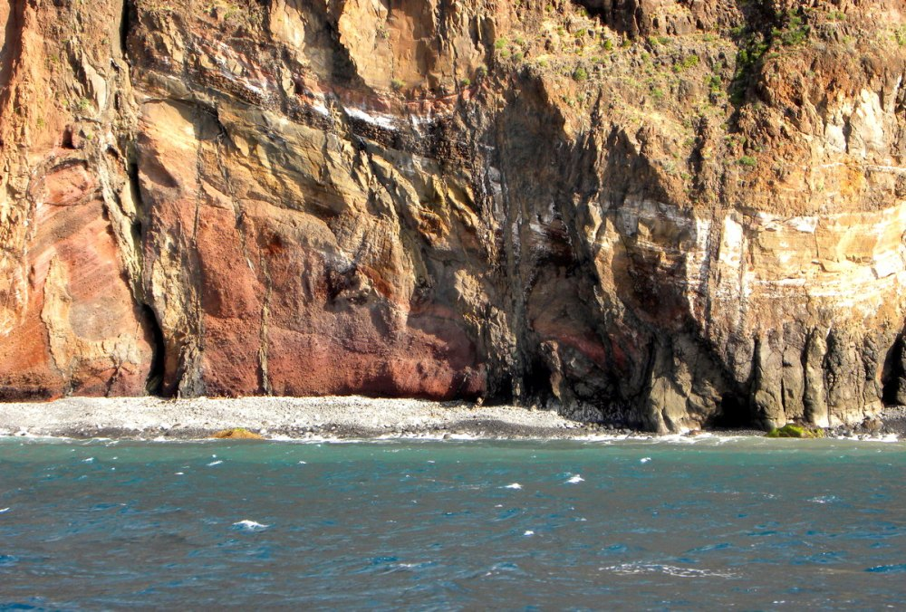 Madeira.18jan. 092