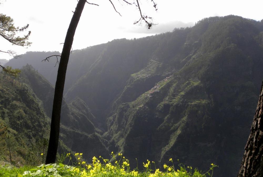 Madeira.18jan. 164