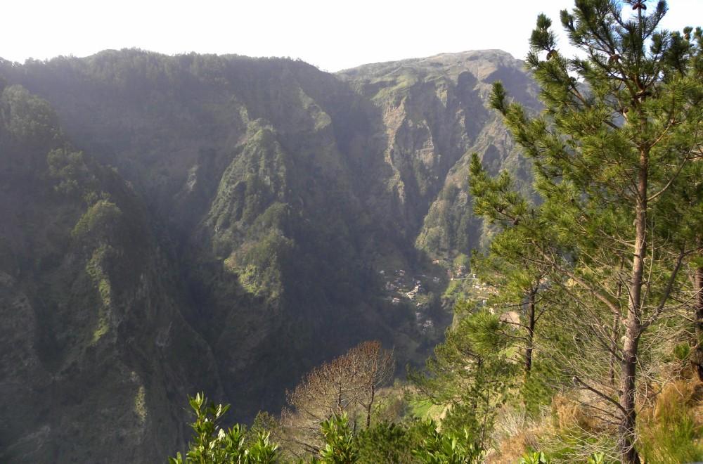 Madeira.18jan. 167
