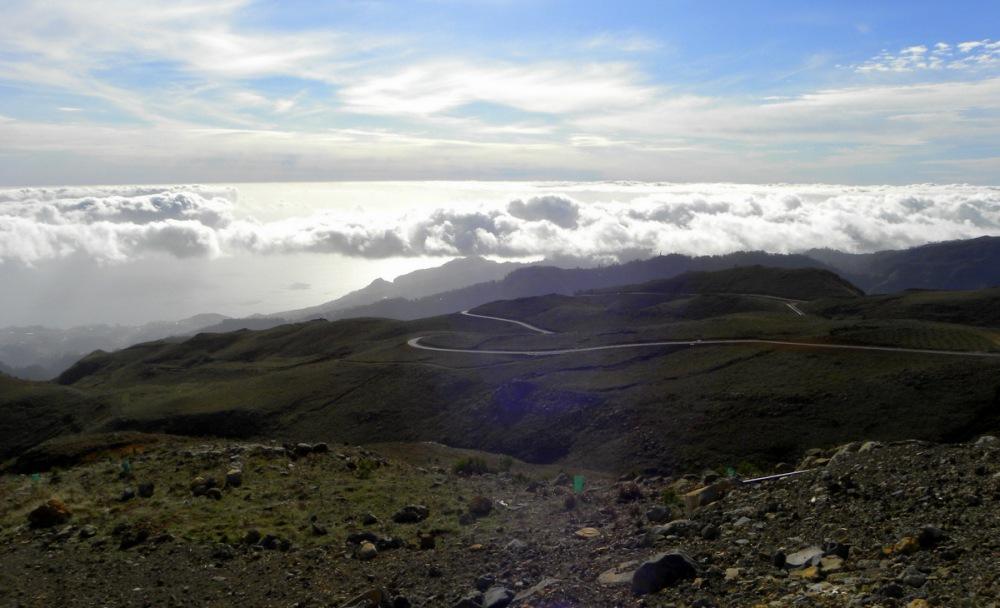 Madeira.18jan. 203