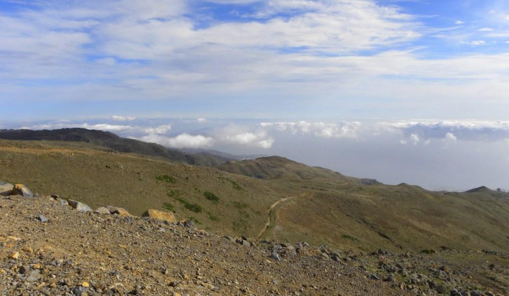 Madeira.18jan. 205
