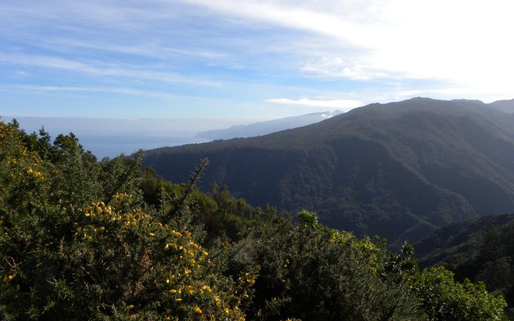 Madeira 412