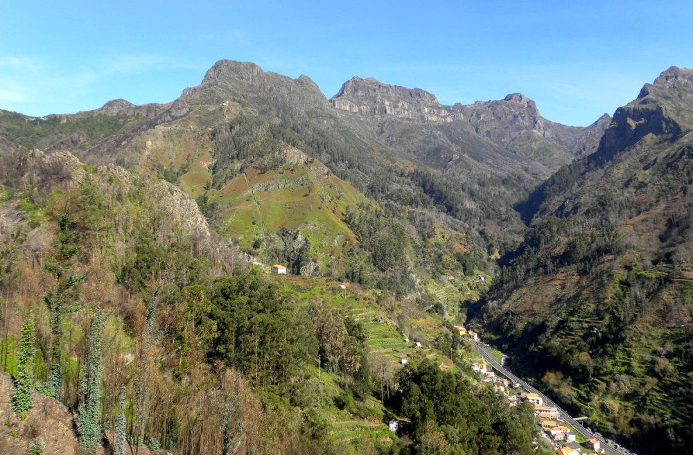Madeira 505