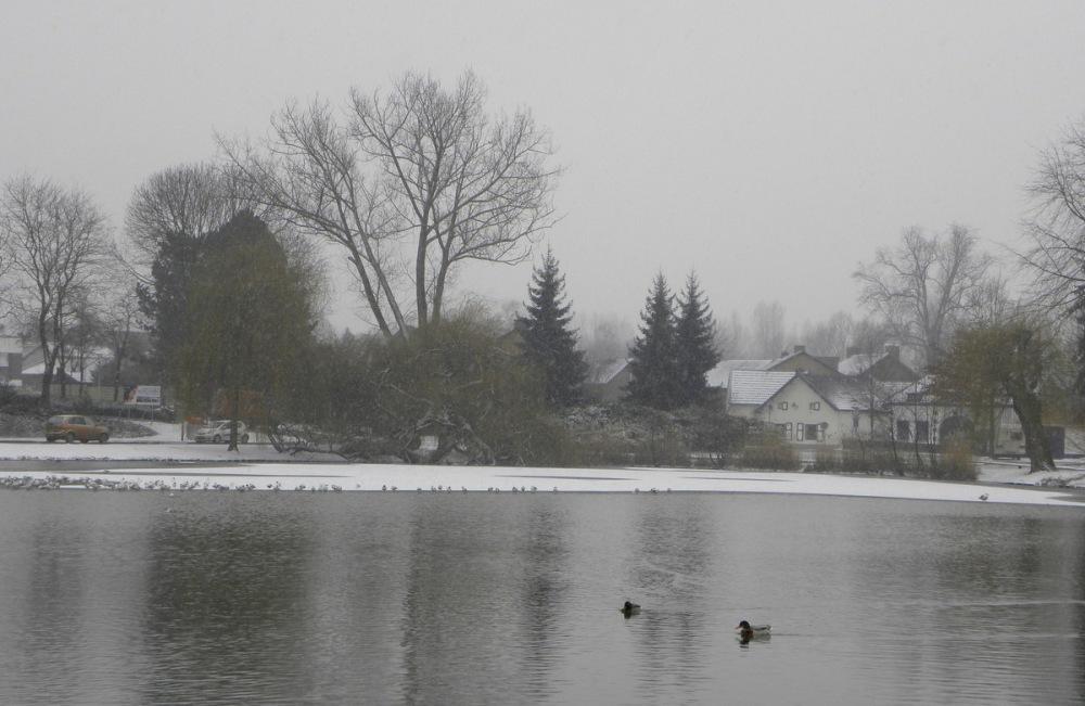 Febr.2013 411