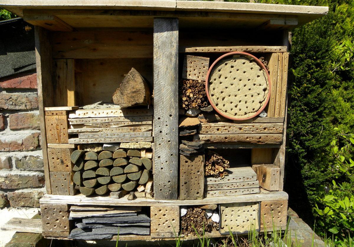 Tijdverdrijf insectenhotel welkom op sandra 39 s fotoblog - Foto houten pallet ...