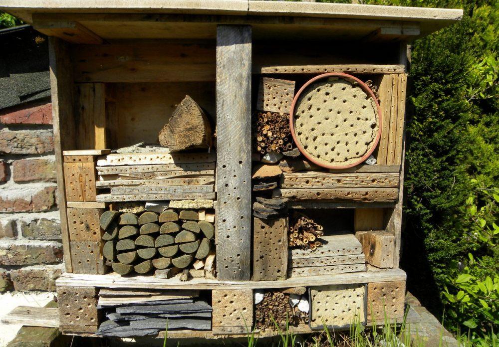 Tijdverdrijf ... insectenhotel