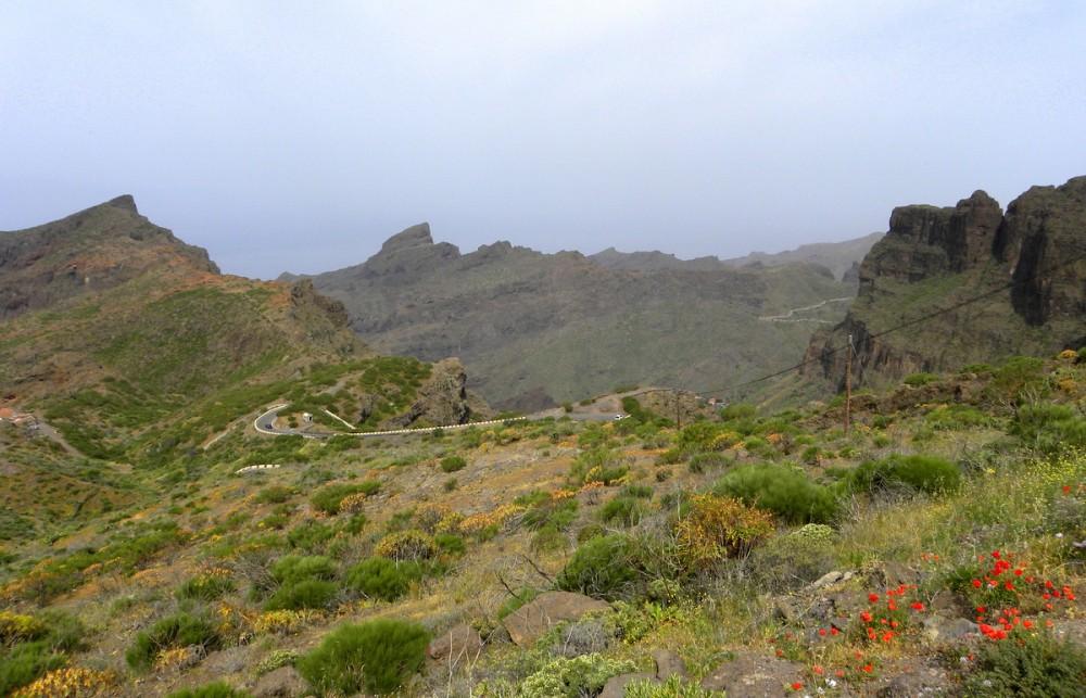 Tenerife 21april2013 011