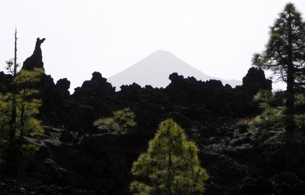 Tenerife 22april2013 019