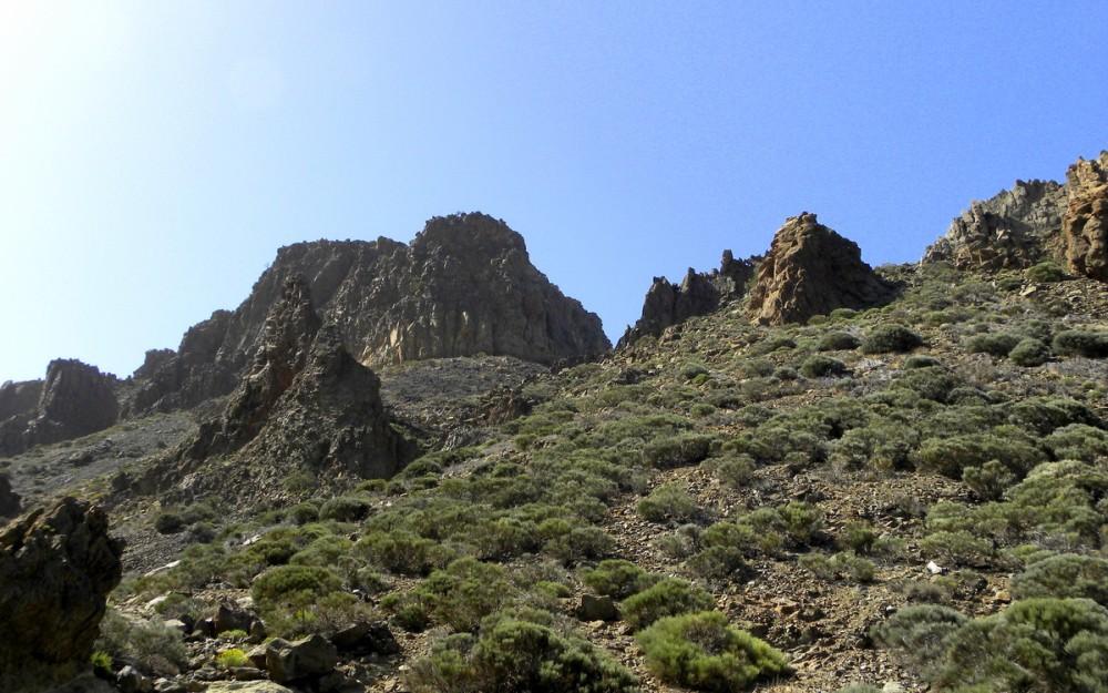 Tenerife 22april2013 052