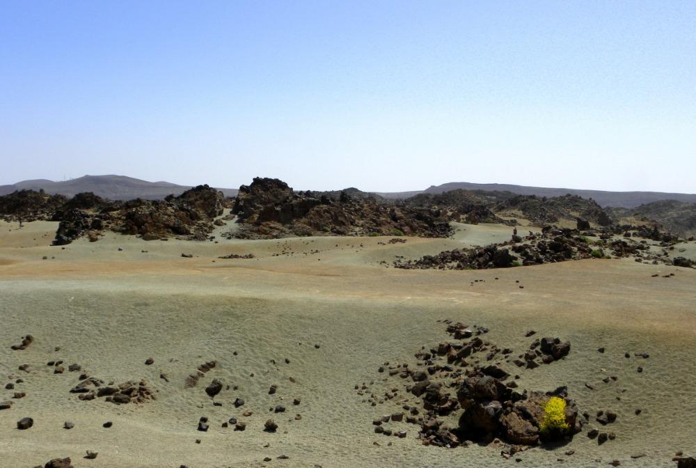 Tenerife 22april2013 093