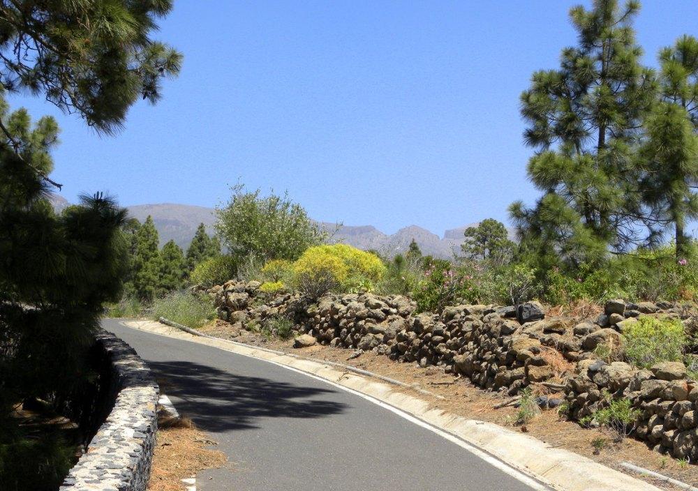 Tenerife 23april2013 041