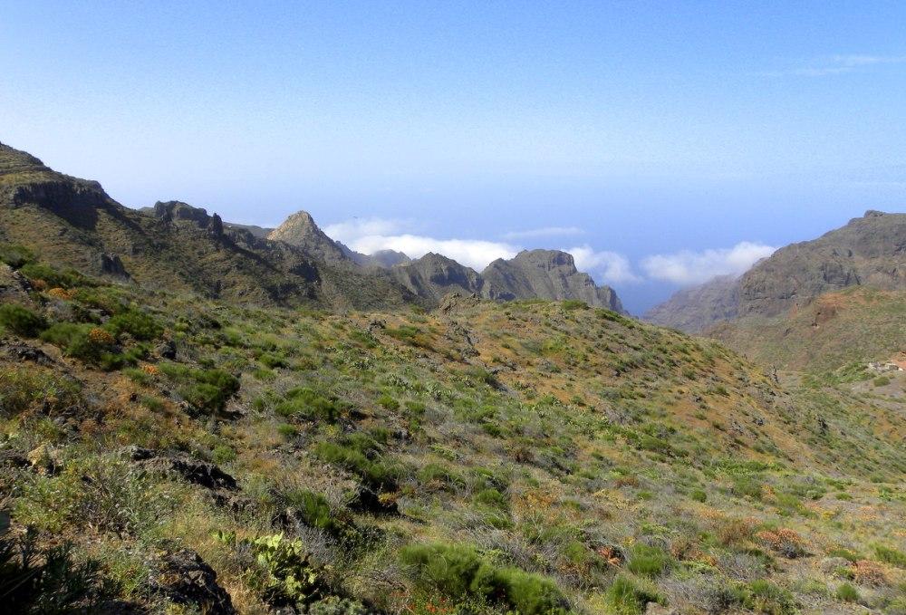 Tenerife 24april2013 006