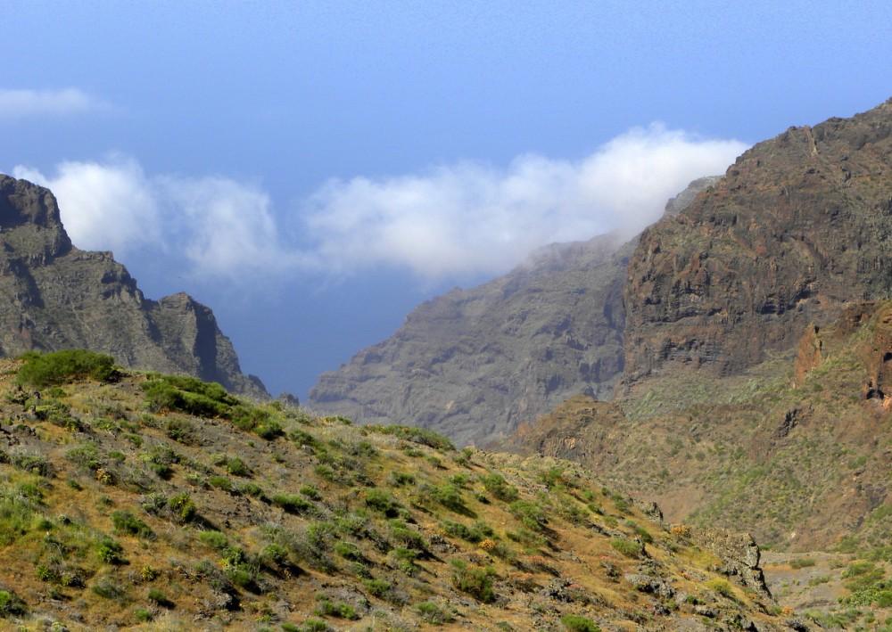 Tenerife 24april2013 008