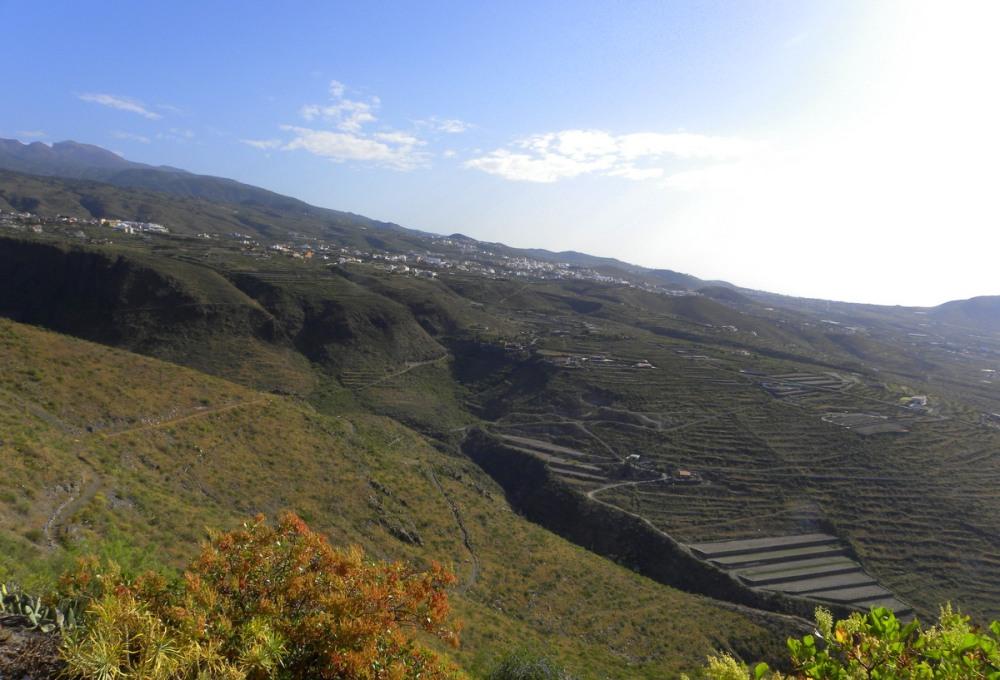Tenerife 25april2013 006