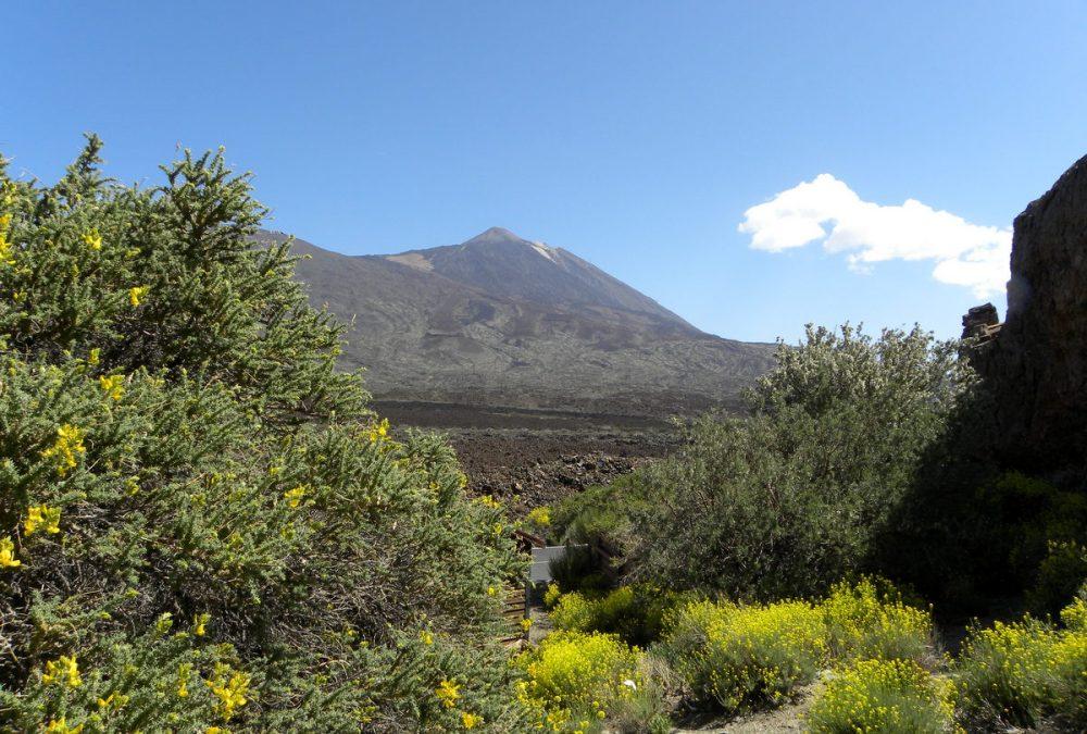 Tenerife 25april2013 038
