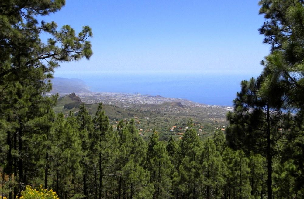 Tenerife 25april2013 104