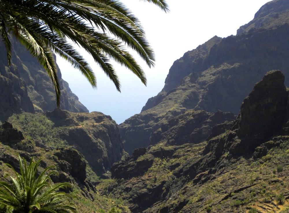 Tenerife 26april2013 022