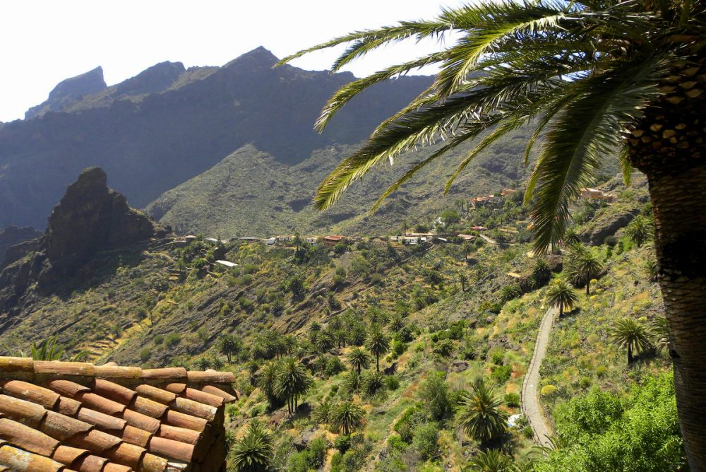 Tenerife 26april2013 030