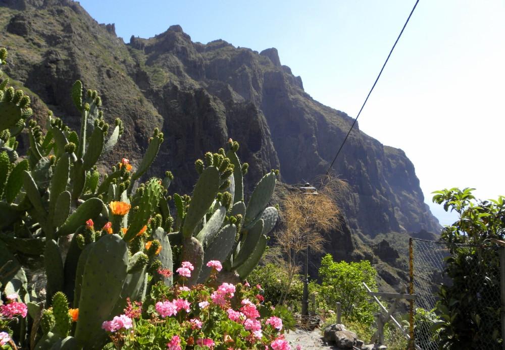 Tenerife 26april2013 034