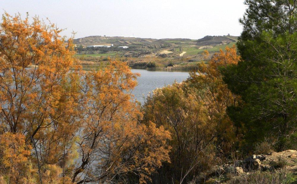 Gonyeli meer
