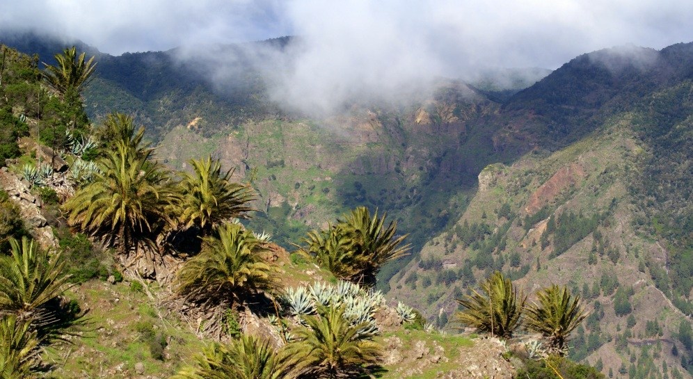bij El Roque