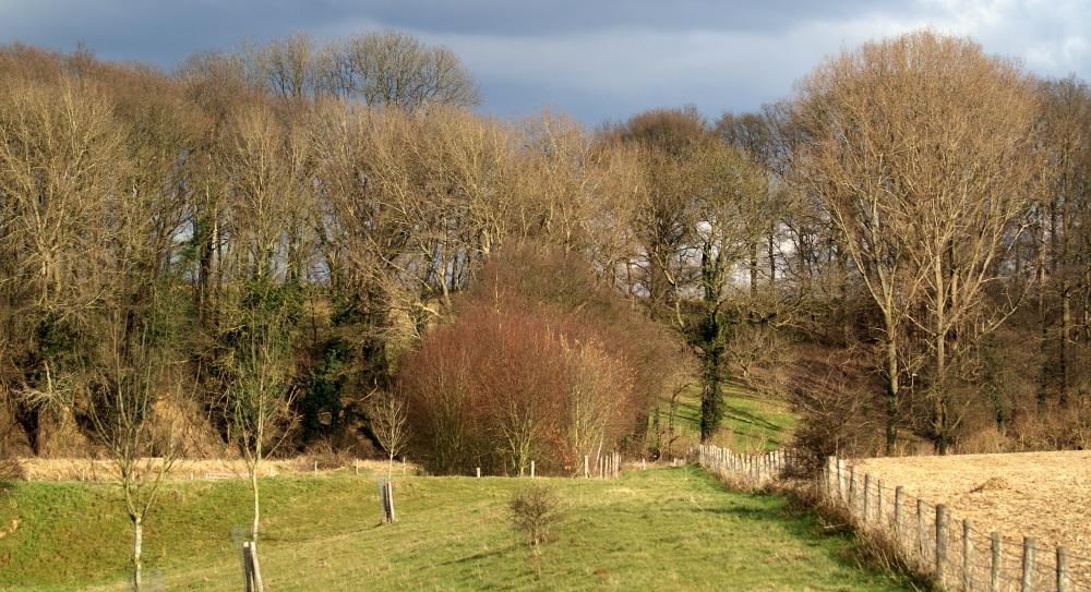 gebied Watersley